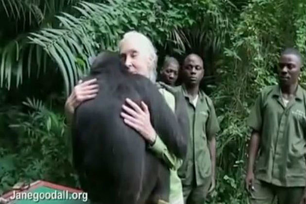 Jane Goodall Is... Jane Goodall Death