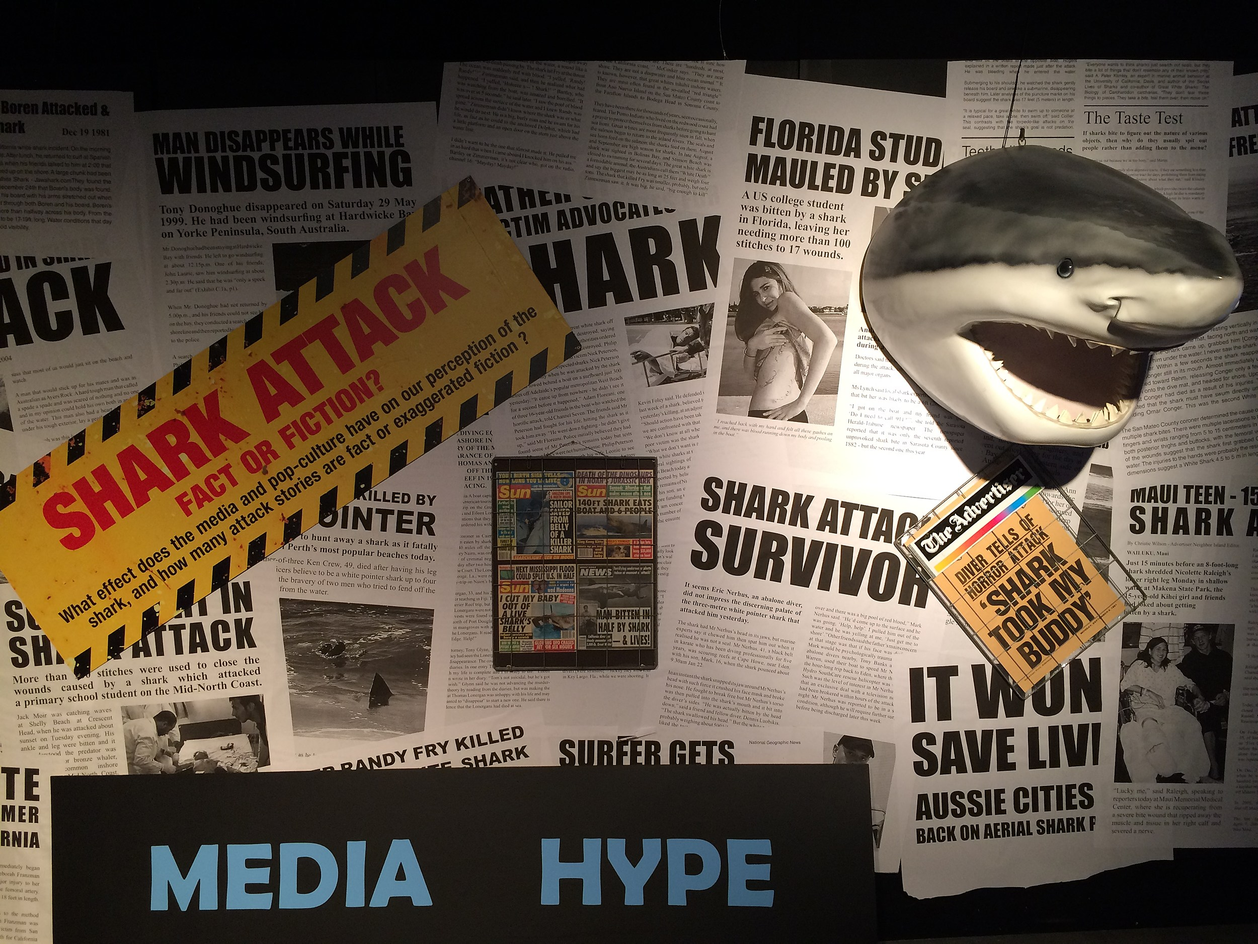 Planet Shark: Did Nikki Overcome Her Fear Of Sharks? [WATCH]